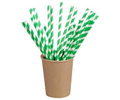Pailles en papier écologique vert et blanc de 21 cm